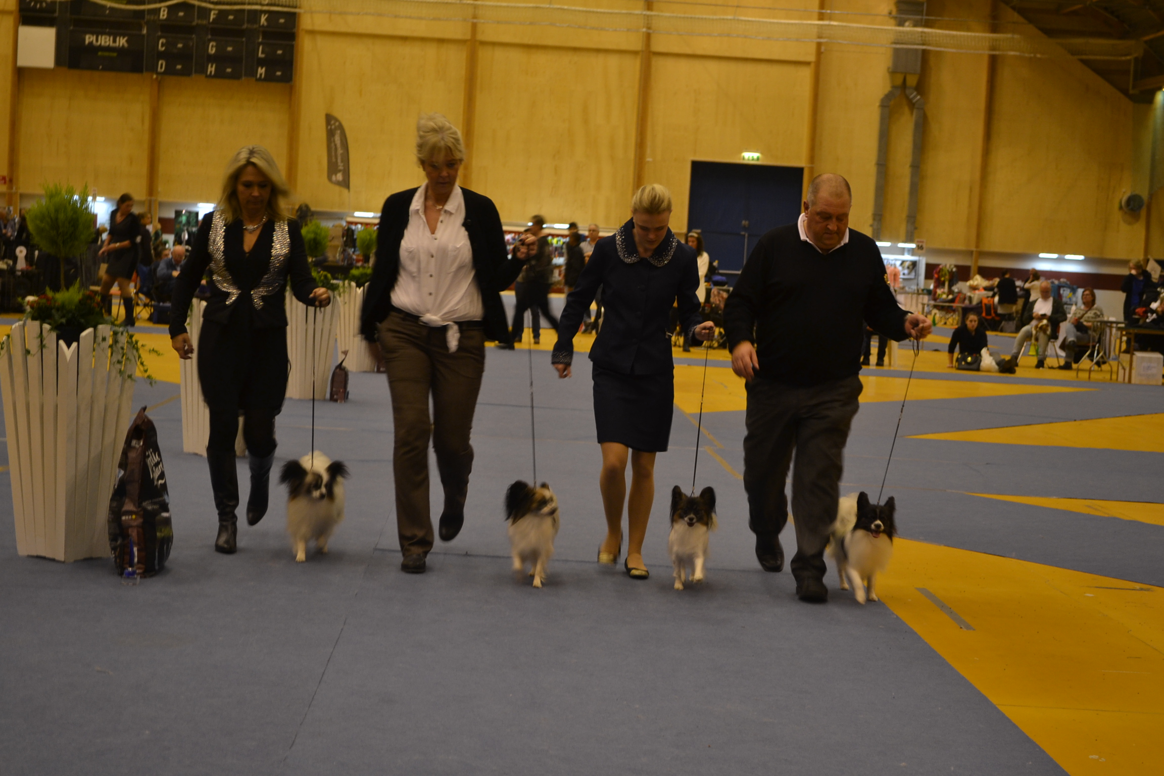 Kennel Caratoots - Best Breeders Group