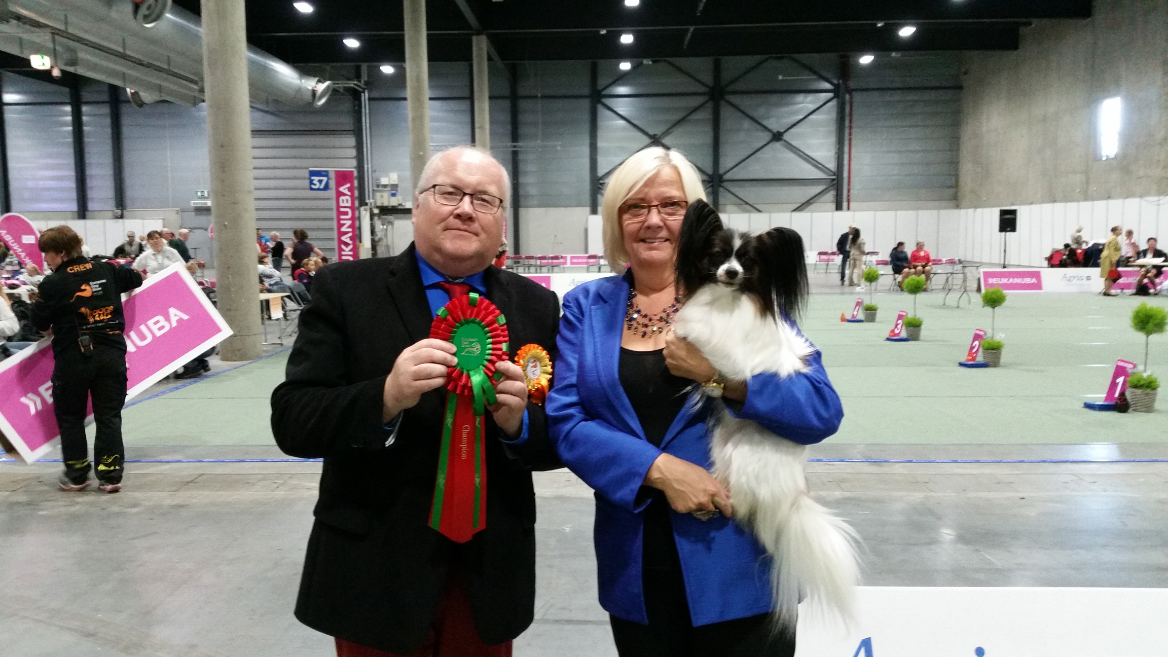 Ch. Topasar Rhapsody In Red - New Norwegian Champion!